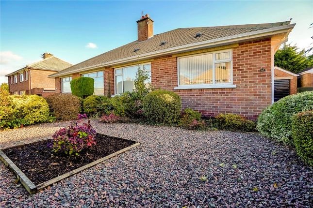 Thumbnail Bungalow for sale in Wanstead Road, Dundonald