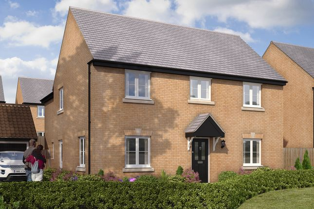 "Thumbnail Detached house for sale in ""The Burghley"" at Gardenfield, Higham Ferrers, Rushden"