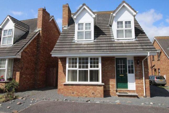 Thumbnail Detached house to rent in Westlands, Portavogie, Newtownards