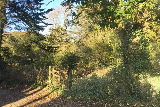 Thumbnail Land for sale in Victoria Avenue, Shanklin