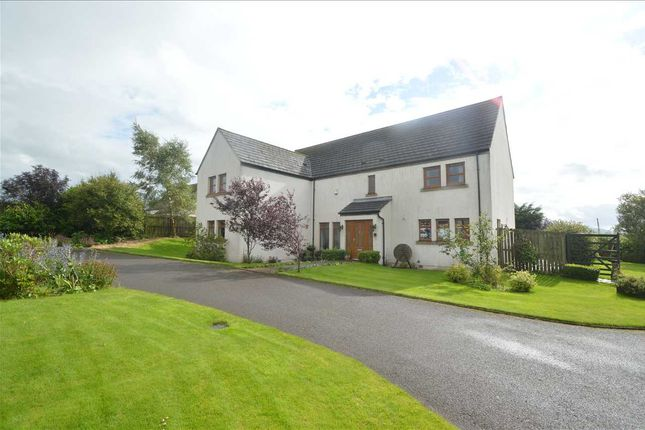 Thumbnail Detached house for sale in Greens Road, Carnwath, Lanark