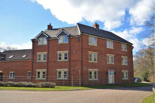 Thumbnail Flat to rent in Tidcombe Walk, Tiverton, Devon