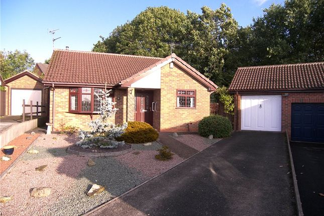Thumbnail 2 bed detached bungalow to rent in Marchington Close, Allestree, Derby