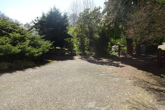 Driveway of Ribigill Ramsay Wood, Gatehouse Of Fleet, Castle Douglas, Dumfries And Galloway. DG7