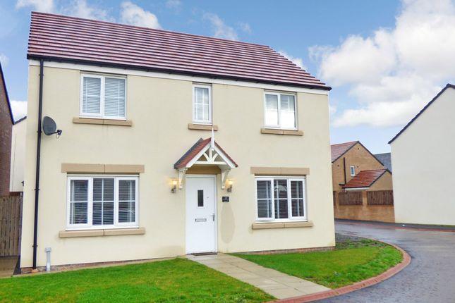 Thumbnail Detached house for sale in Halton Grove, Blyth