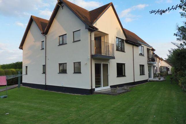 Thumbnail Flat to rent in Kildare Gardens, Minehead