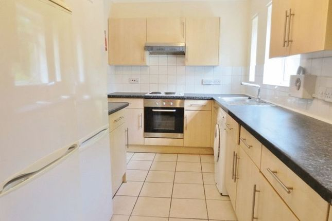 5 bed terraced house to rent in The Avenue, Brighton