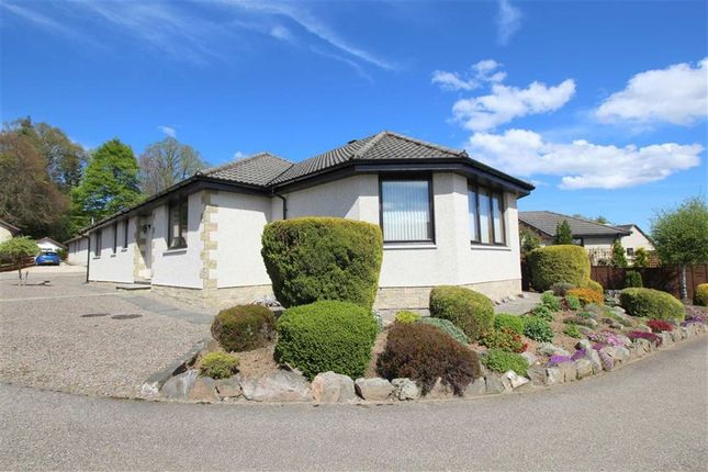 Thumbnail Detached bungalow for sale in 8 Wallace Court, St Andrews Road, Dingwall