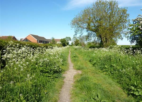Property For Sale In Lincolnshire With Land