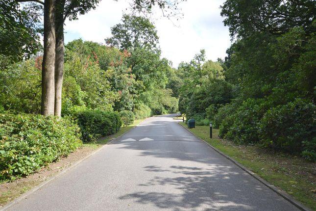 Driveway of Elizabeth Drive, Banstead SM7