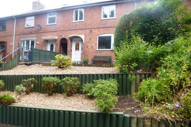 Thumbnail Property to rent in Bransford Road, Worcester