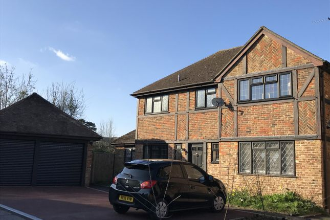 Thumbnail Detached house to rent in Ravenscroft, Hook