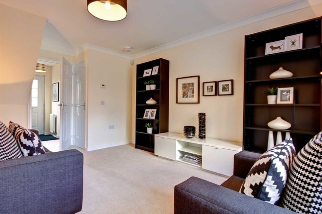 """Semi-detached house for sale in """"The Newton"""" at Stable Gardens, Galashiels"""