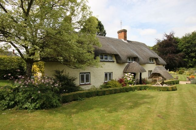 Thumbnail Cottage for sale in East Cholderton, Andover, Hampshire