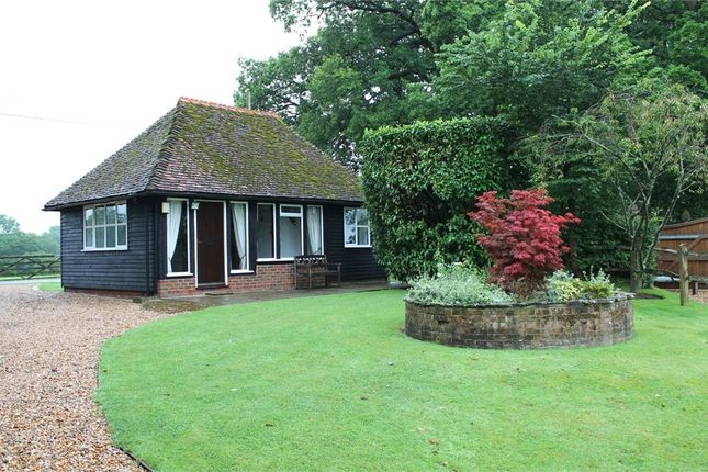 Thumbnail Cottage to rent in The Haven, Billingshurst, West Sussex