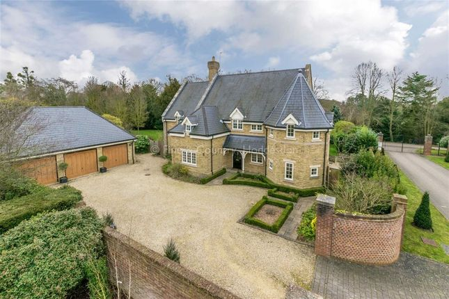 Thumbnail Detached house to rent in Gilston Park, Gilston, Essex