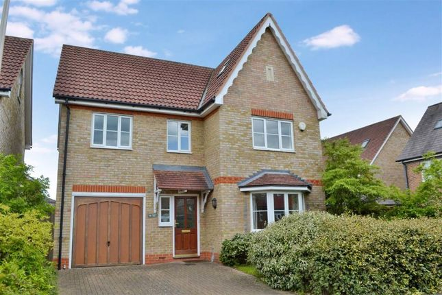 Thumbnail Detached house to rent in Ascott Way, Newbury