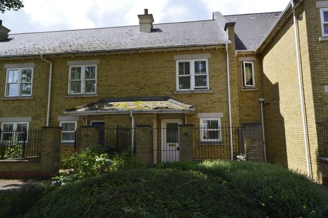 2 bed terraced house for sale in Marigold Way, Maidstone
