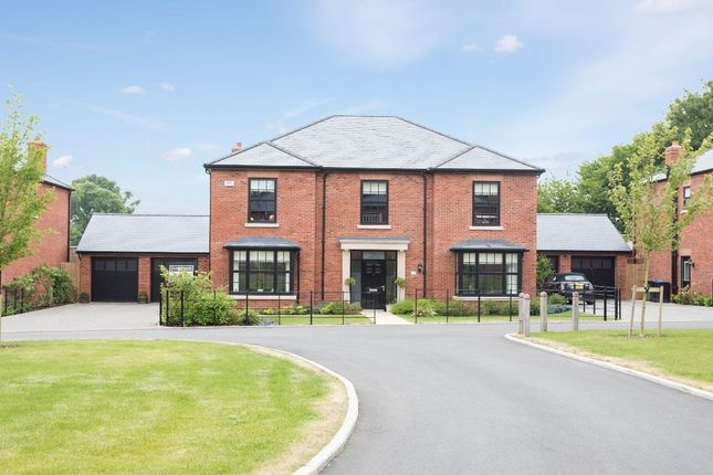 Thumbnail Detached house for sale in Warre Close, Rugby