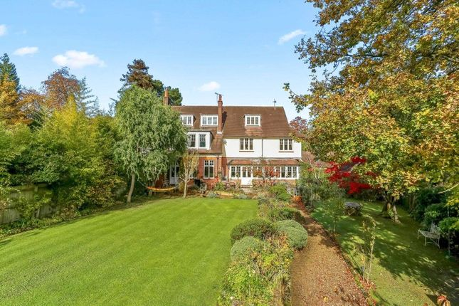Thumbnail Semi-detached house for sale in Park Road, Forest Row, East Sussex