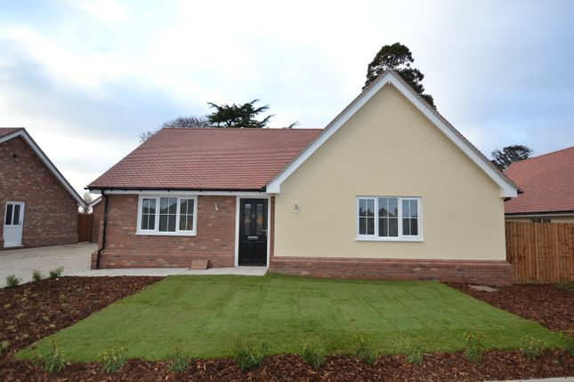 Thumbnail Detached bungalow for sale in Wyndham Crescent, Clacton-On-Sea