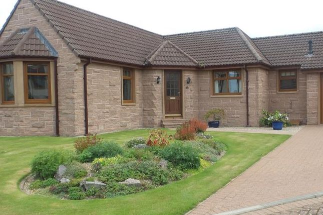 Thumbnail Detached bungalow to rent in Grovita Gardens, Forres