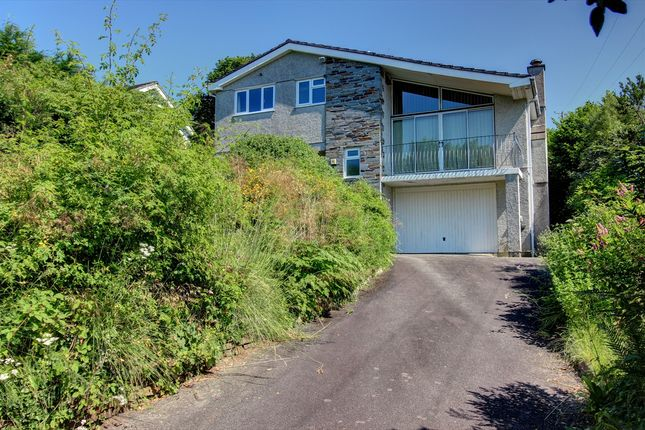 Thumbnail Detached house for sale in Johnson Park, Calstock