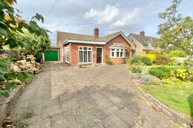 2 bed detached bungalow to rent in Martham Road, Rollesby, Great Yarmouth NR29