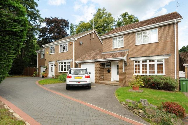Thumbnail Detached house to rent in Bosman Drive, Windlesham