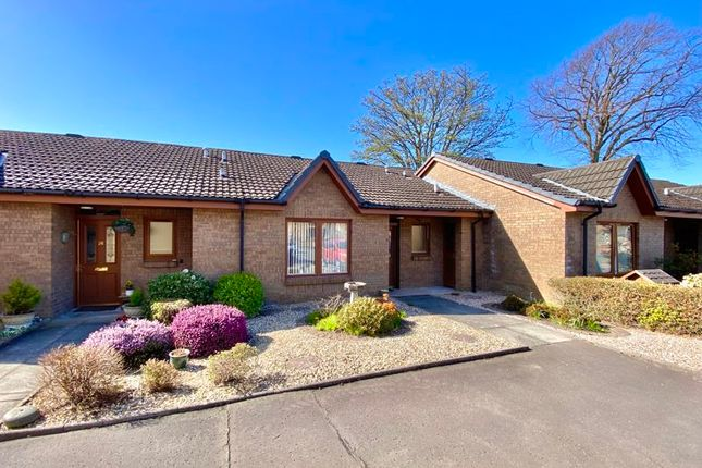 Thumbnail Terraced bungalow for sale in Carrick Gardens, Ayr