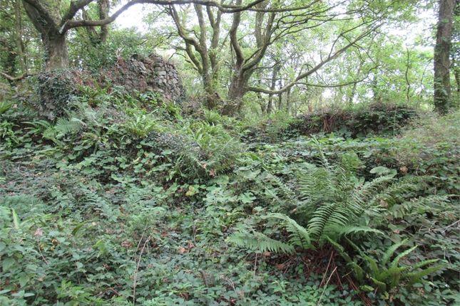Glandwr (Being Part Of Trefasser Isaf), Trefasser, Goodwick, Pembrokeshire SA64