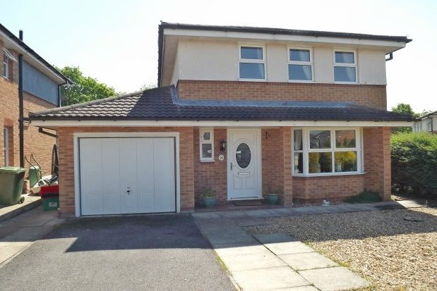 Thumbnail Property to rent in Rookery Rise, Winsford