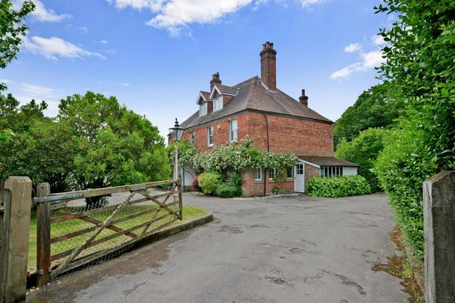 Thumbnail Detached house to rent in Fittleworth Road, Wisborough Green, Billingshurst