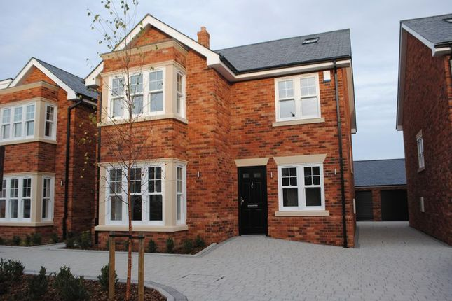 Thumbnail Detached house for sale in Salisbury Road, Leigh-On-Sea, Essex