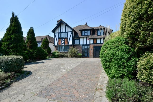 Thumbnail Detached house to rent in Woodland Drive, Hove