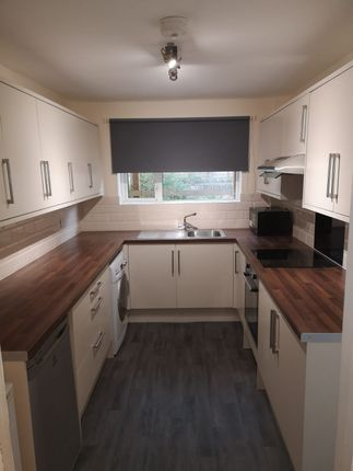 Thumbnail Terraced house to rent in Ringwood Road, Bath