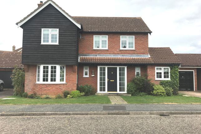 Thumbnail Detached house to rent in Millfield Road, Barningham, Bury St. Edmunds