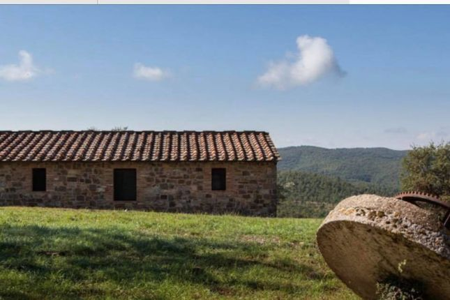 Thumbnail Country house for sale in Gaiole In Chianti, Gaiole In Chianti, Siena, Tuscany, Italy
