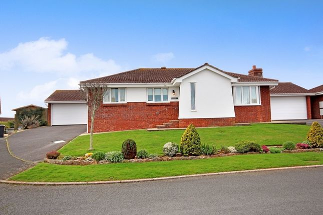 Thumbnail Detached bungalow for sale in Blenheim Close, Torquay
