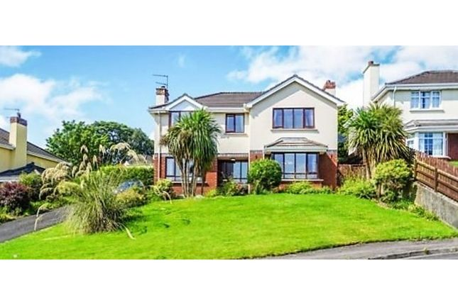 Thumbnail Detached house for sale in Woodbrook West, Londonderry