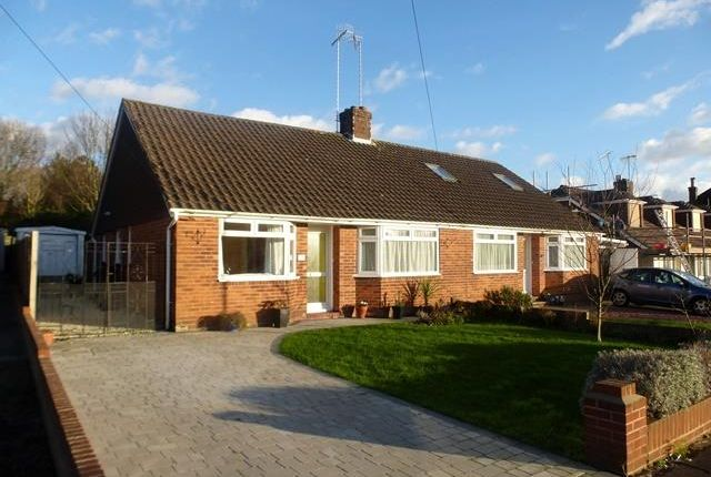 Thumbnail Bungalow to rent in Pines Avenue, Broadwater, Worthing