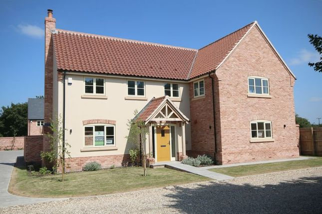 Thumbnail Detached house for sale in Ashfield Gardens, Isleham, Ely