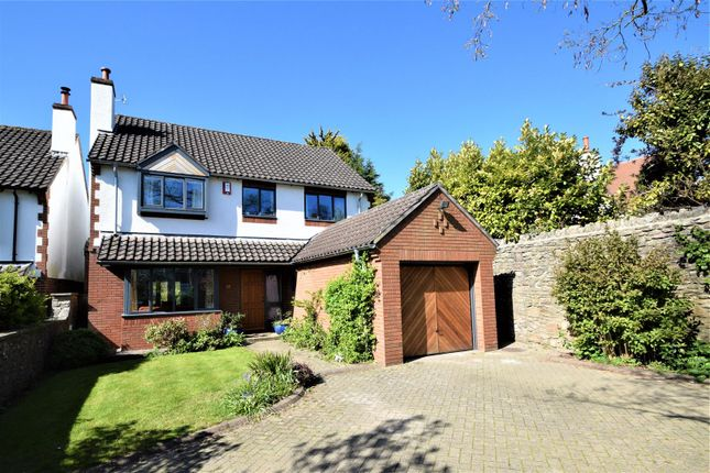 Thumbnail Detached house for sale in Grove Road, Coombe Dingle, Bristol