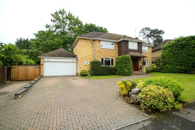Thumbnail Detached house for sale in Maultway Crescent, Camberley, Surrey