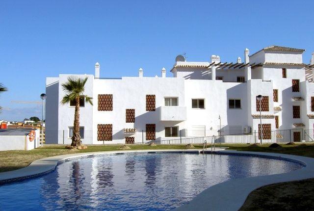 Spain, Málaga, Estepona