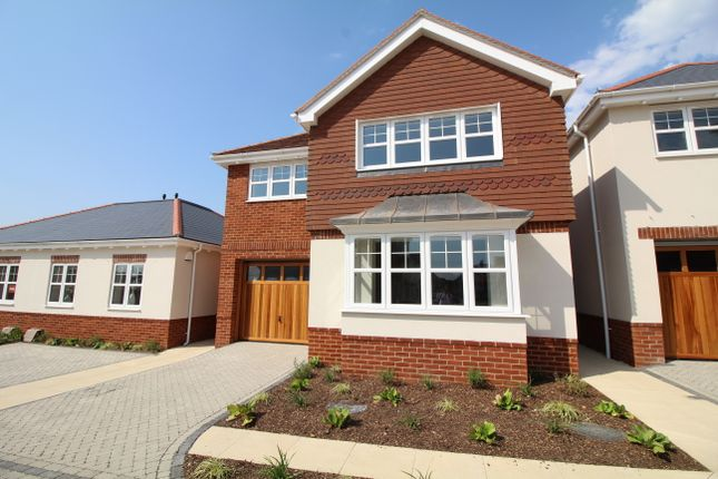 Thumbnail Detached house for sale in Dorchester Road, Upton, Poole