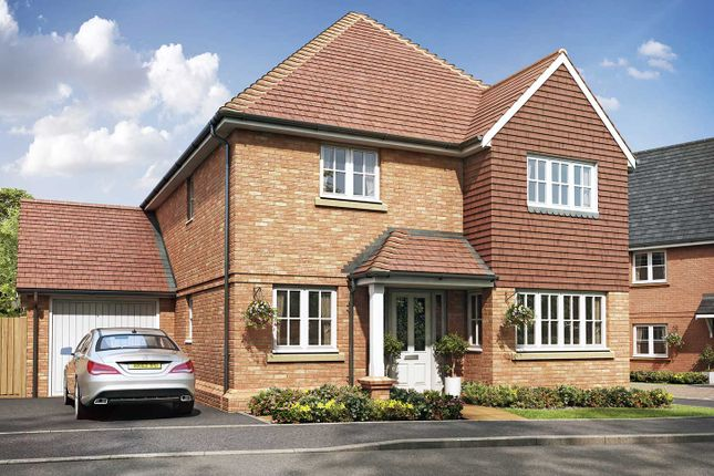 """Thumbnail Detached house for sale in """"The Westminster"""" at Eagle Avenue, Cowplain, Waterlooville"""