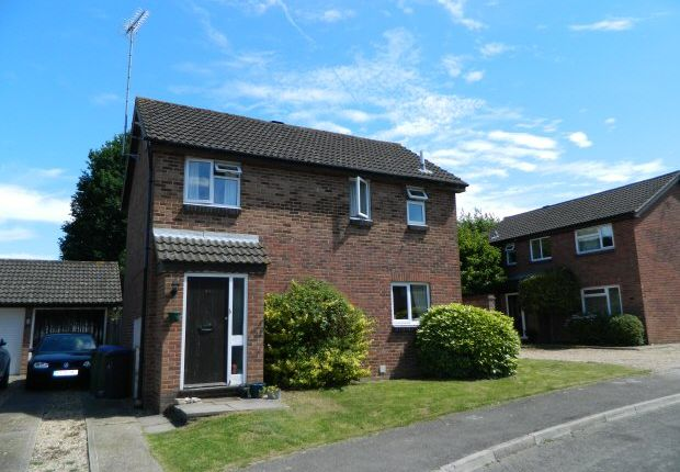 Thumbnail Property to rent in Beaver Close, Horsham