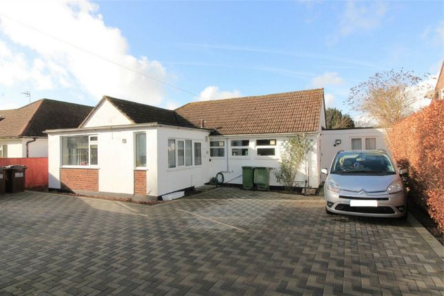 Thumbnail Detached bungalow for sale in The Gorseway, Bexhill On Sea, East Sussex