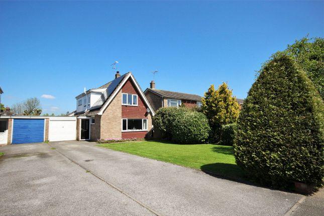 Thumbnail Detached house for sale in Fingringhoe Road, Langenhoe, Colchester, Essex